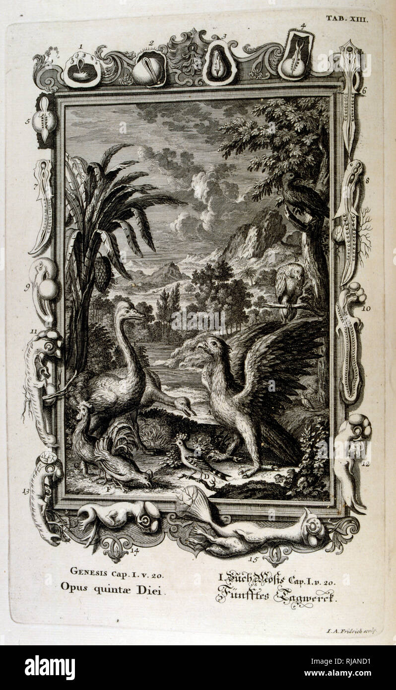 The Genesis creation narrative is the creation myth of both Judaism and Christianity. The Fifth Day of Creation: Animals are created. From Physique sacree, ou Histoire-naturelle de la Bible, 1732-1737, by Johann Jakob Scheuchzer (1672 - 1733), a Swiss scholar born at Zurich - Stock Image