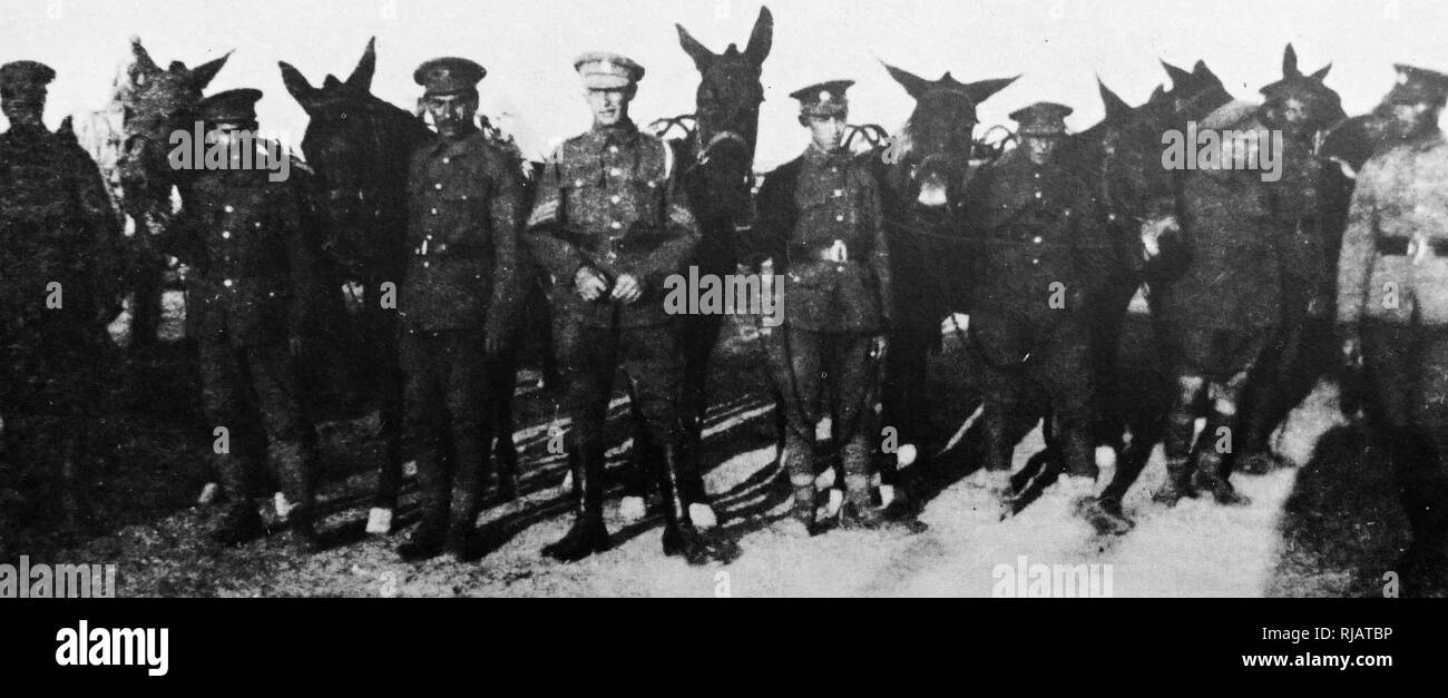 Palestine Jews served with the British Army as the Zion Mule Corps in 1915. Joseph Trumpeldor formed the 650-strong Zion Mule Corps, of whom 562 were sent to the Gallipoli front in World War One. Joseph Trumpeldor (1880 - 1920) Centre with sergeants stripes, an early Zionist activist and war hero. He helped organize the Zion Mule Corps and bring Jewish immigrants to Israel. Trumpeldor died defending the settlement of Tel Hai in 1920 and subsequently became a Zionist national hero. Stock Photo