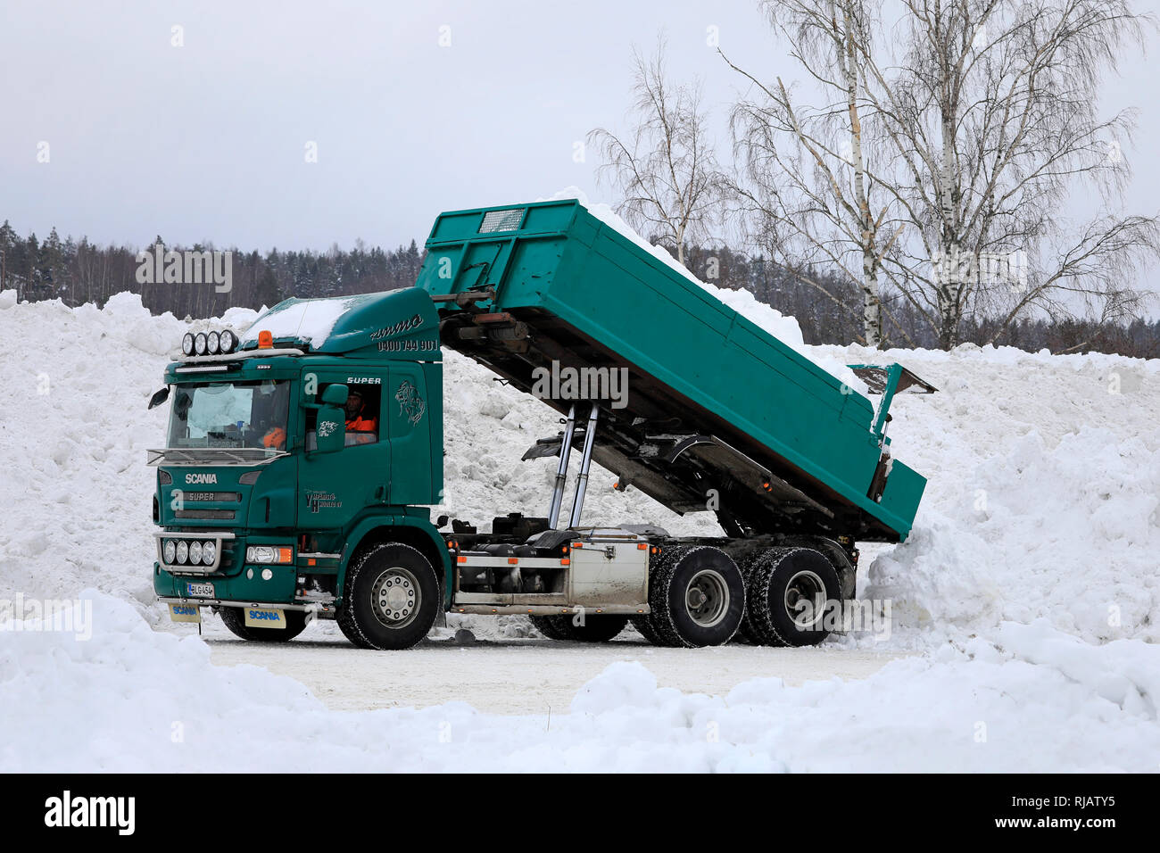 Salo, Finland - February 2, 2019: Green Scania P420 tipper truck unloads snow cleared from streets and parking lots at municipal snow dumping area. - Stock Image