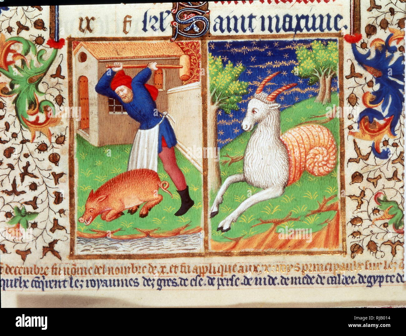 French book of hours showing a pig being slaughtered and a unicorn 1423 - Stock Image