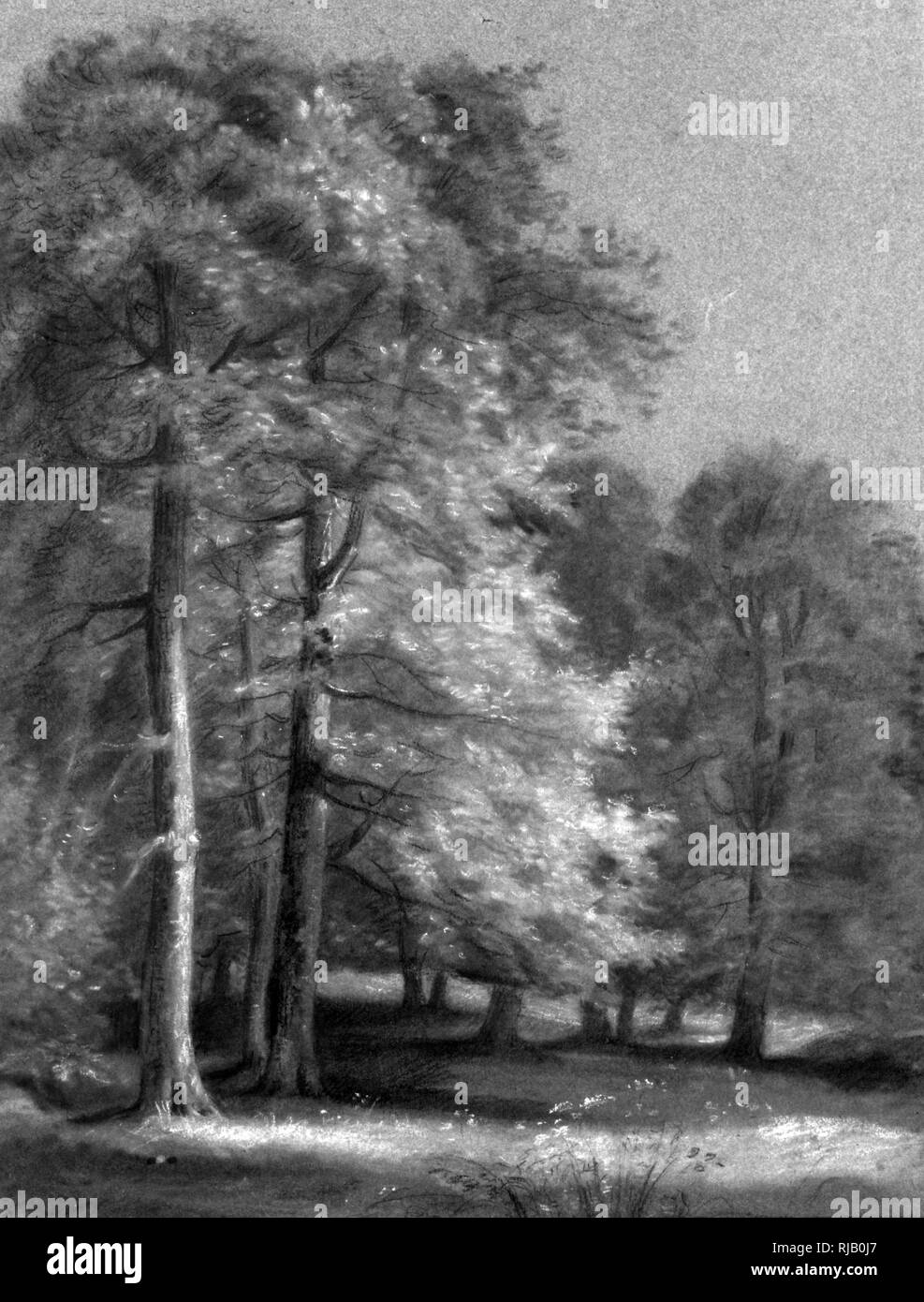 The Park at Malmaison, 1819, by Pierre-Paul Prud'hon (1758 - 1823); French Romantic painter.  Black and white chalk on blue laid paper. Landscape studies are quite rare in Prud'hon's oeuvre. In depicting the site devoid of human figures, the artist focused his attention on the careful rendering of the effects of light and shade. The setting has been identified as a view of the park of Malmaison, the site of Empress Josephine Bonaparte's residence, about nine miles west of the center of Paris - Stock Image