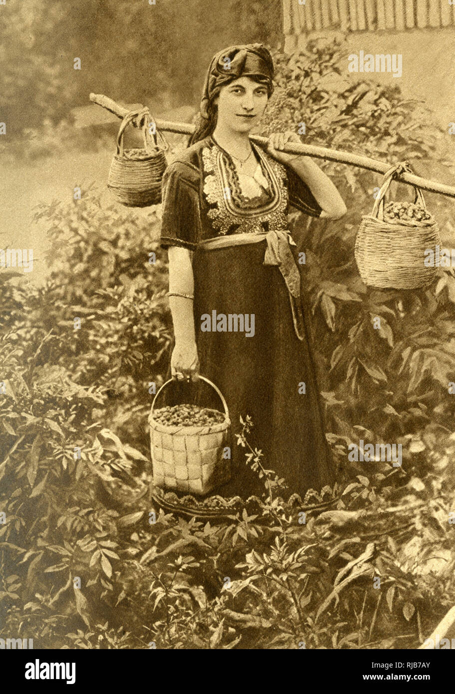 Young peasant woman in traditional dress with embroidered bodice, Bulgaria. She is carrying baskets of wild berries. Stock Photo