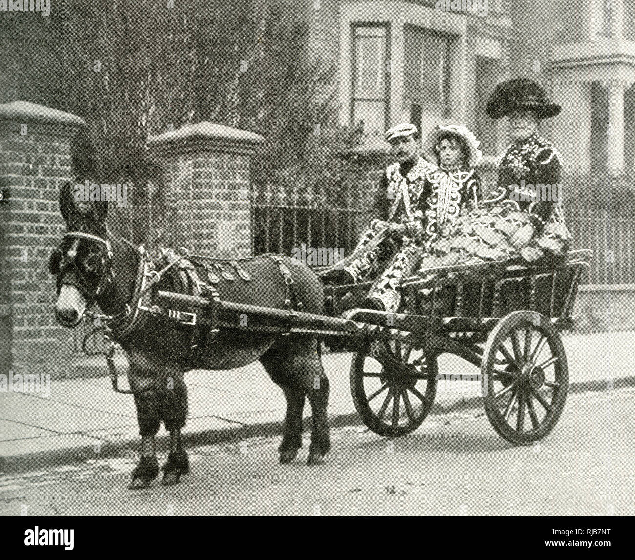 Pearly King, Pearly Queen and daughter, riding in a cart drawn by a mule, North London. Stock Photo