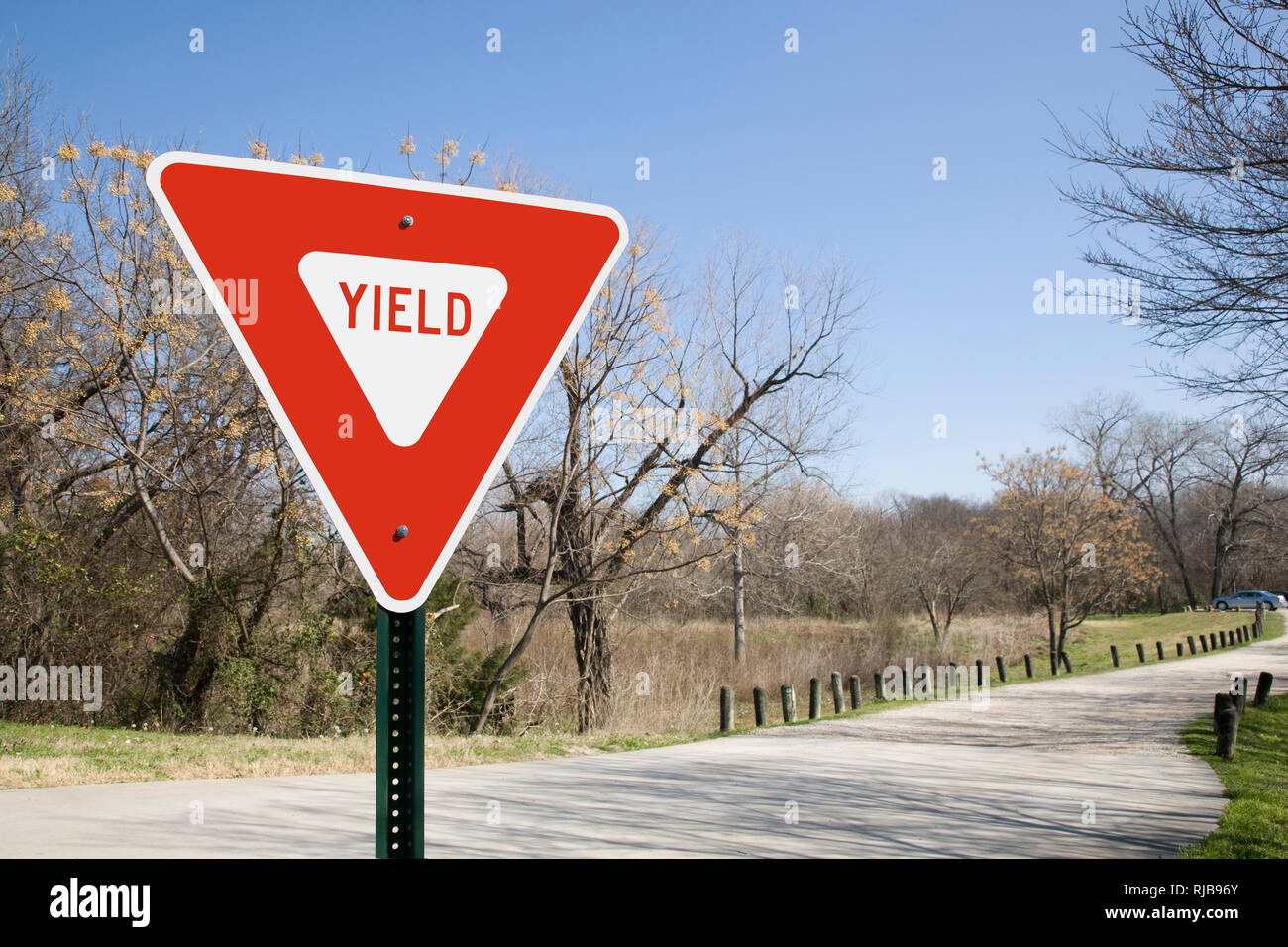 Yield Sign In Sunlight - Stock Image