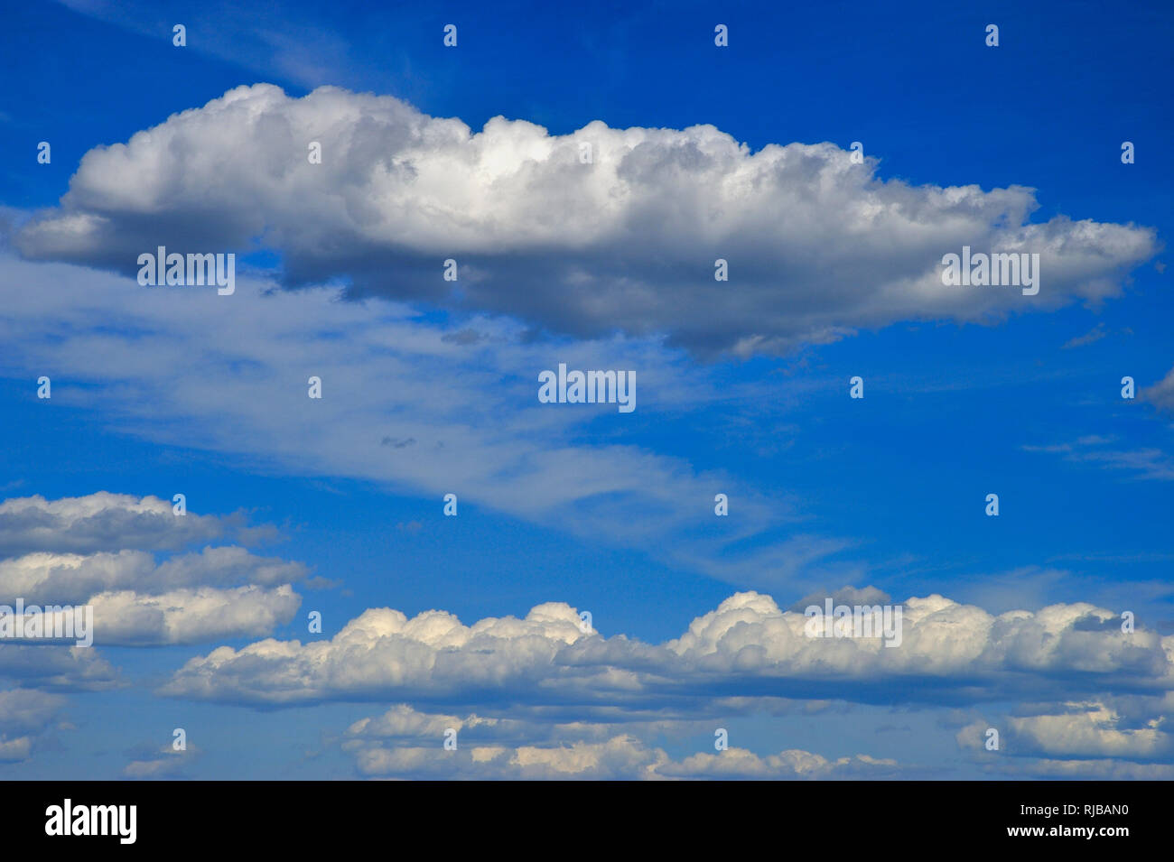 A horizontal image of a blue sky with white fluffy clouds floating by in Alberta Canada. - Stock Image