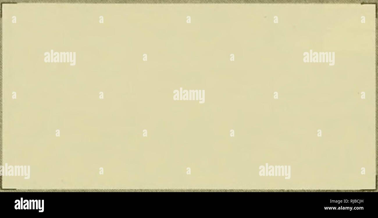 Repon Stock Photos & Repon Stock Images - Alamy