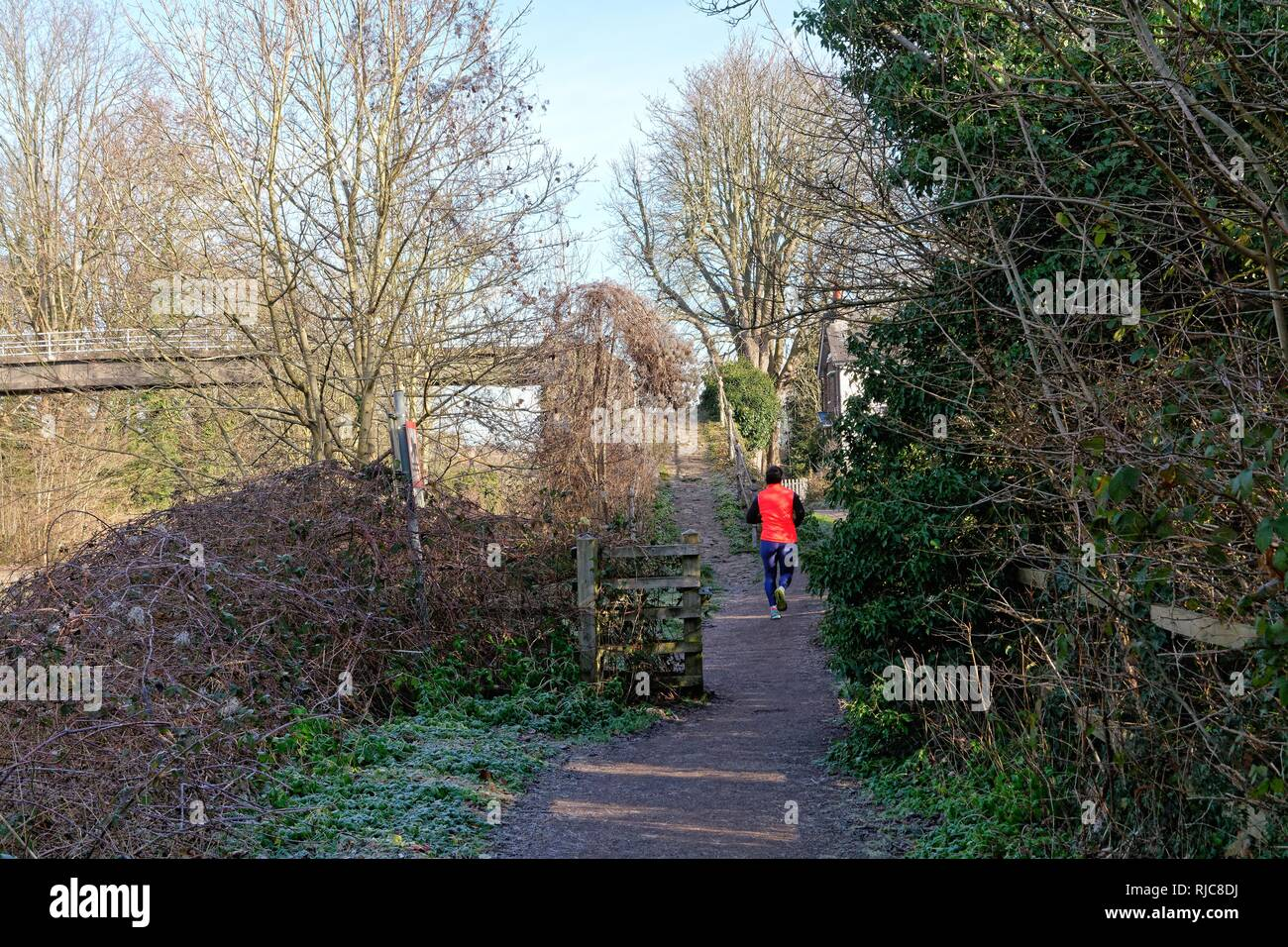 Rear view of a young man in a high viz jacket running on the towpath at Walton on a sunny winters day Surrey England UK - Stock Image