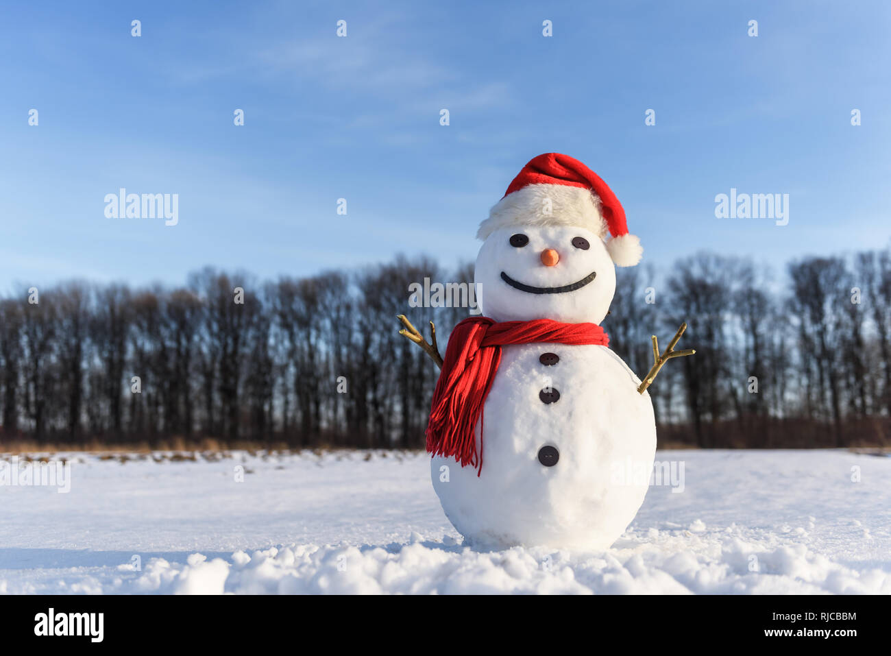 5b92825b47577 Funny snowman in santa hat and red scalf on snowy field. Christmass and New  Year background