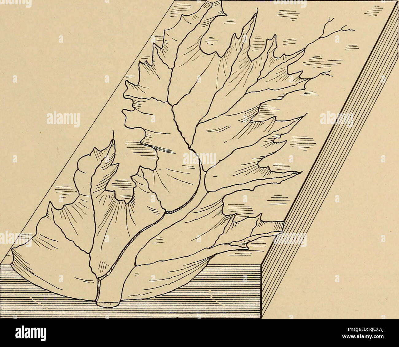 Cecil County Geology Maryland Geological Survey 187 Engaged The