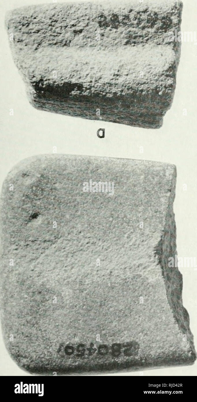 Chapters in the prehistory of eastern Arizona  ARTIFACTS 135
