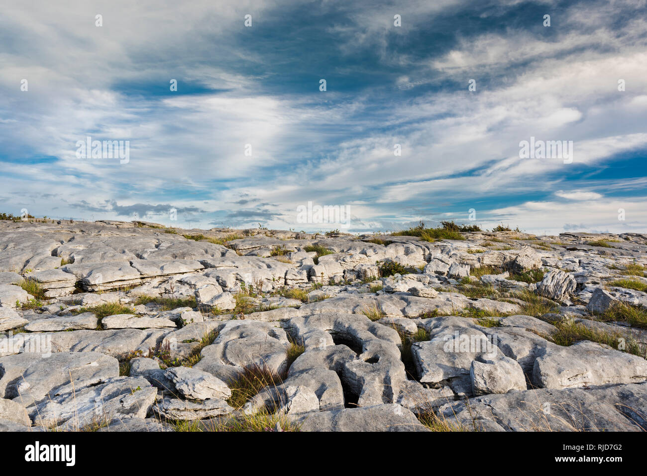 Limestone pavement in the Burren County Clare, Ireland - Stock Image