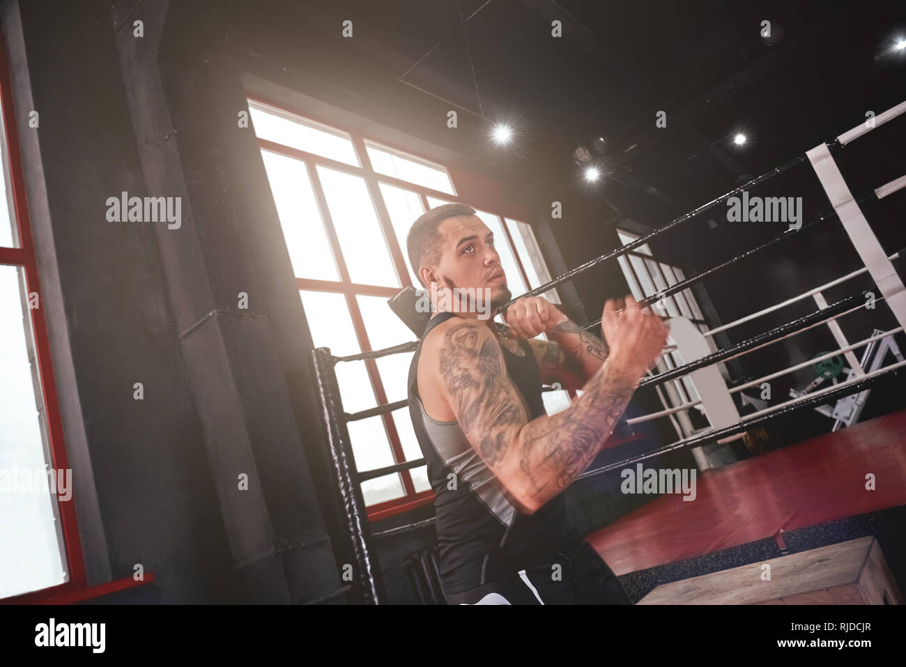 Muscular strong boxer mma fighter in sports clothing
