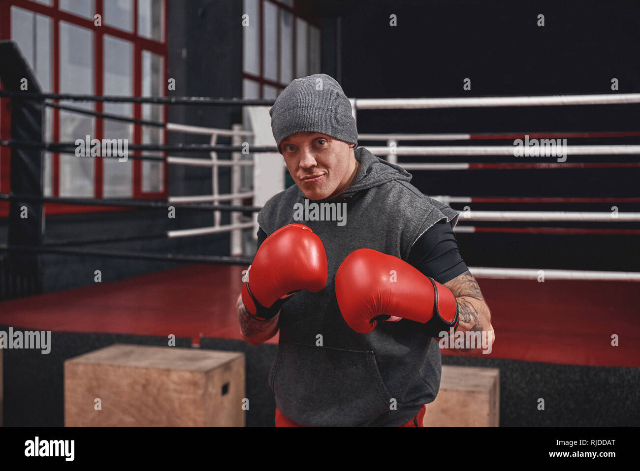 Confident muscular boxer in sports clothing with red boxing gloves standing on classic safeguard. Young athlete on guard stand in black boxing gym - Stock Image