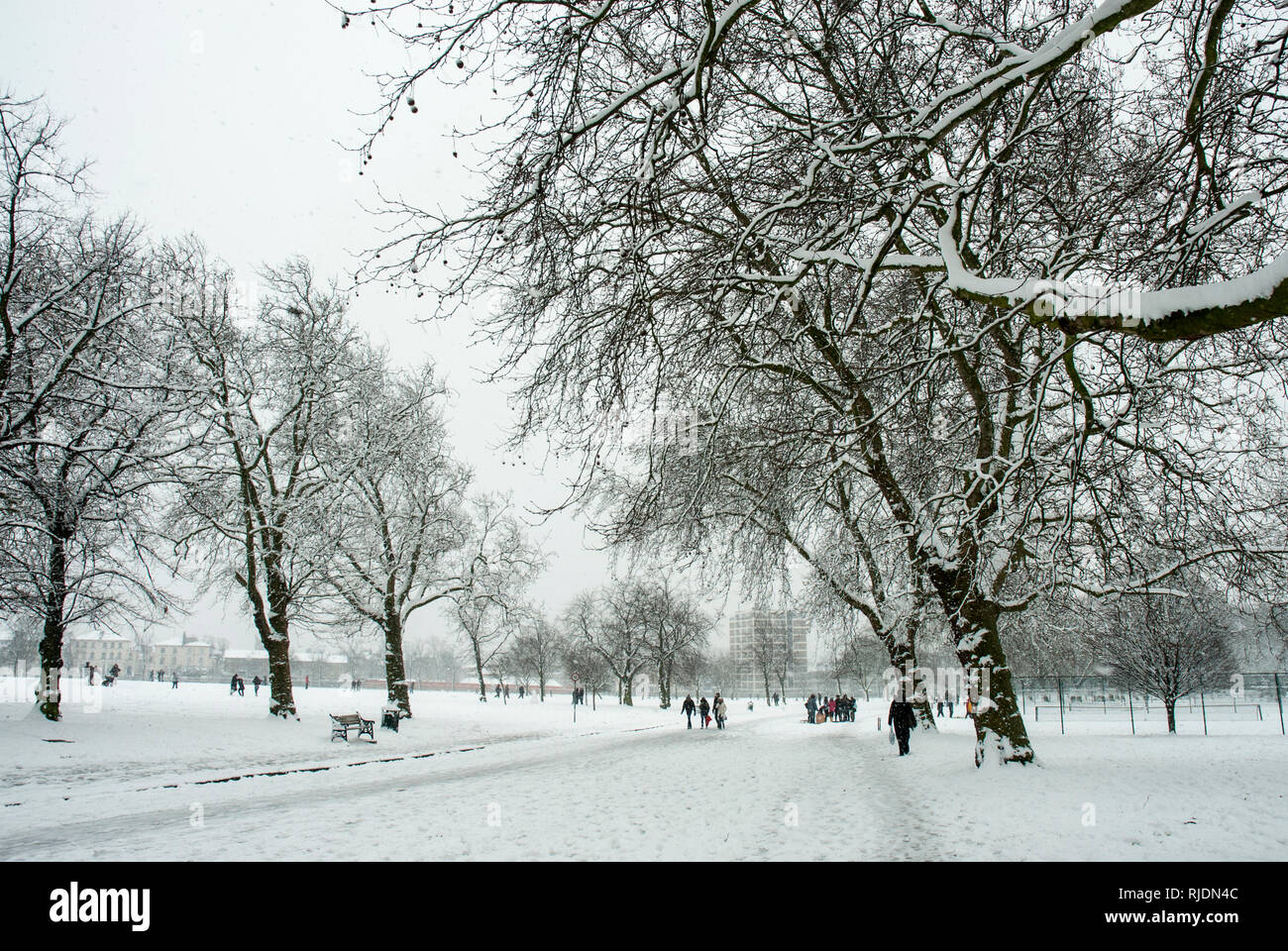 Finsbury Park, Haringey, London. Actively snowing with trees and park covered in snow as people in the distance walk and have fun. - Stock Image