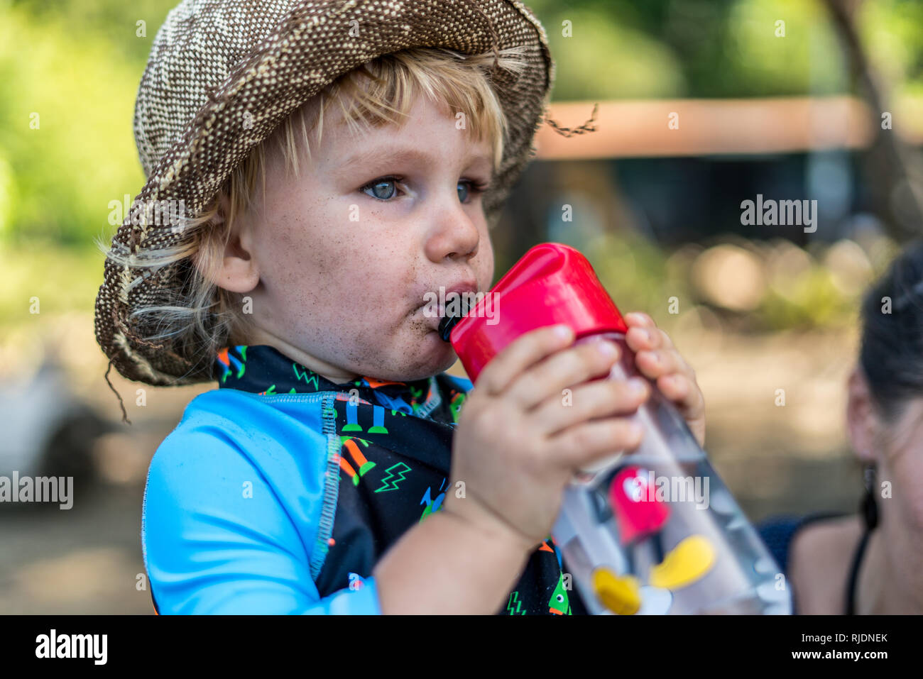 A portrait of a 2 year old toddler intently drinking from his plastic water bottle. - Stock Image