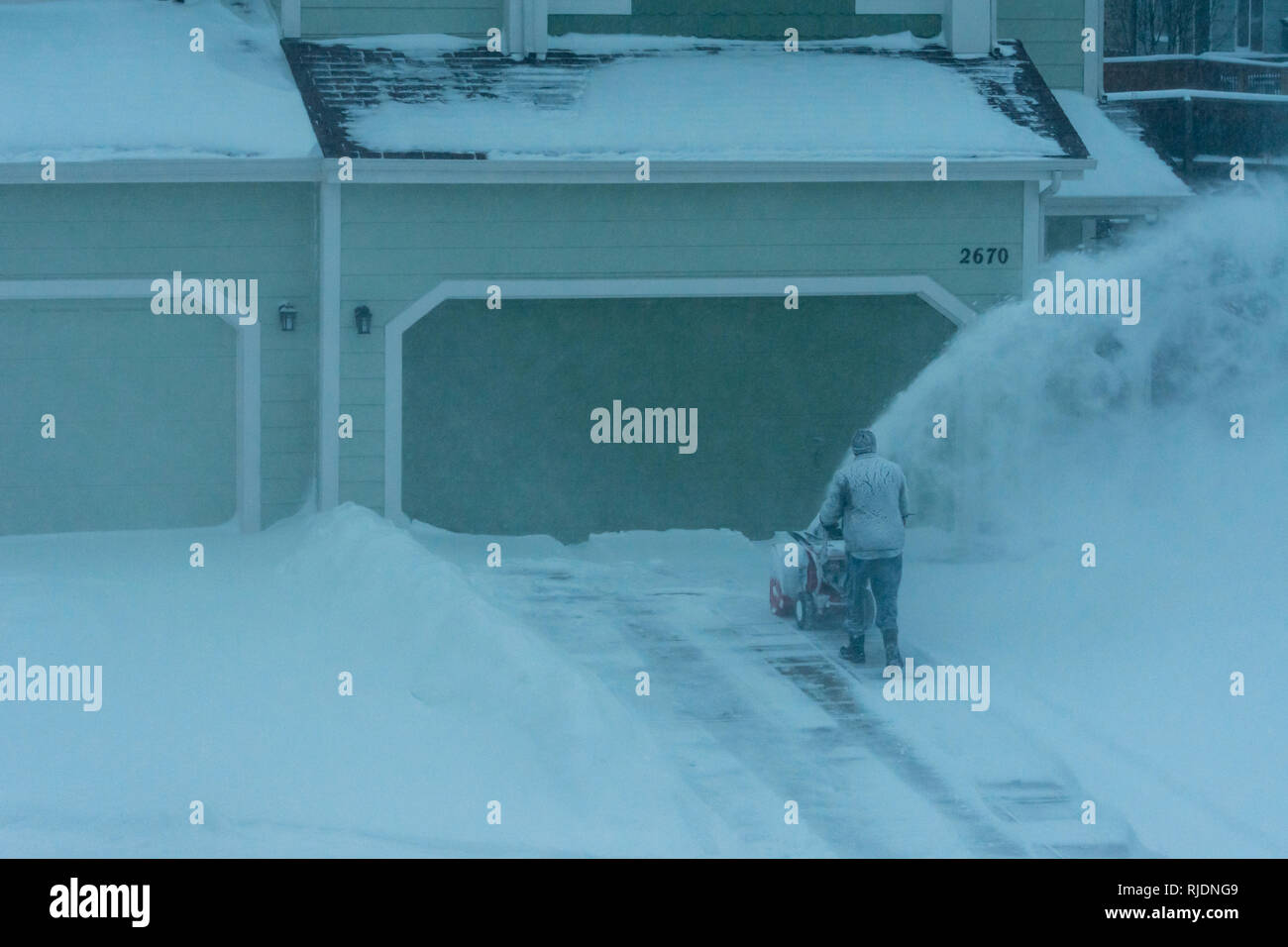 Homeowner uses motorized snow blower to clear snow from driveway during winter snowstorm, Castle Rock Colorado US. Photo taken in January. - Stock Image