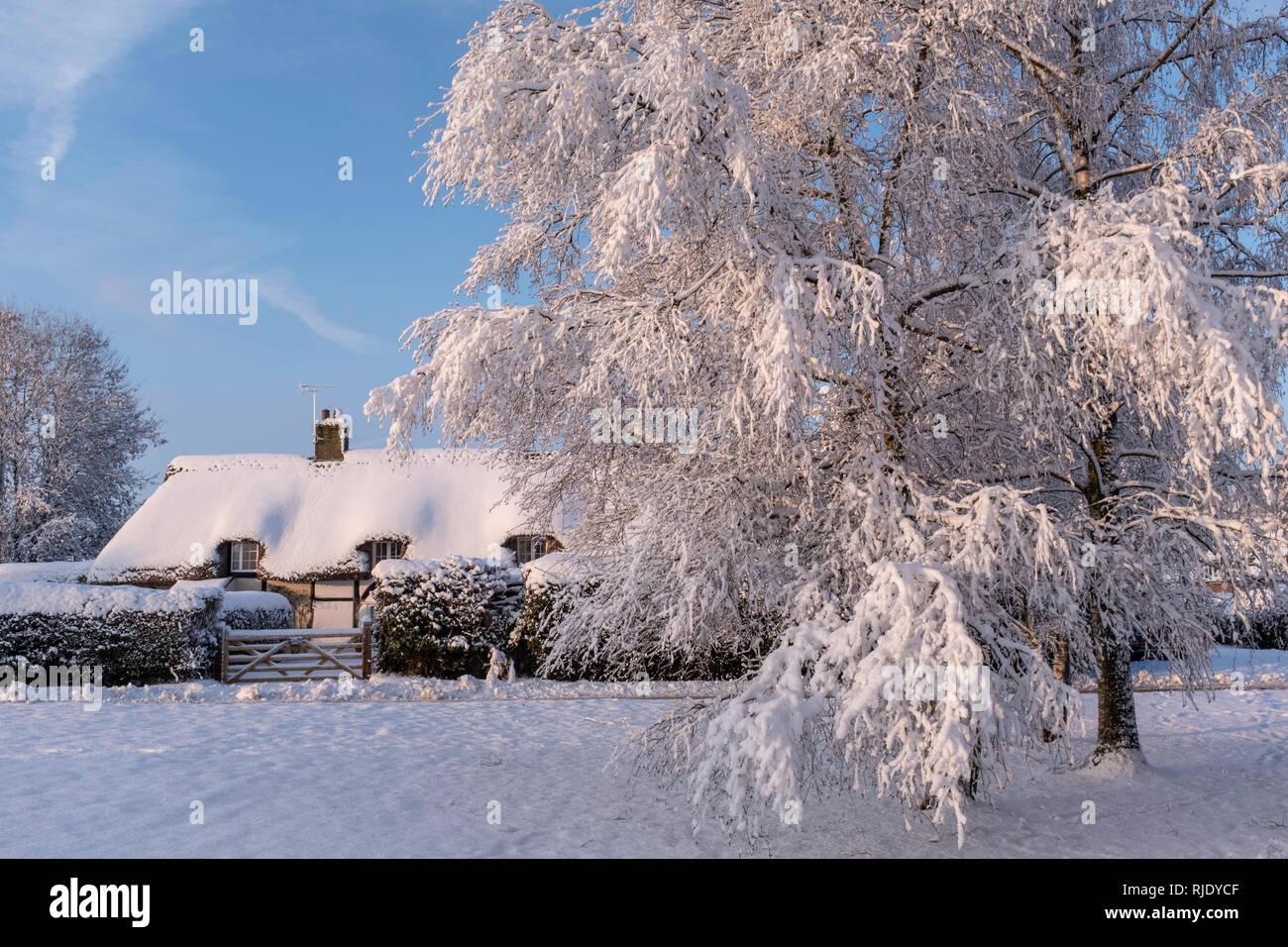 Snowy village, Upper Wield, Hampshire, UK - Stock Image