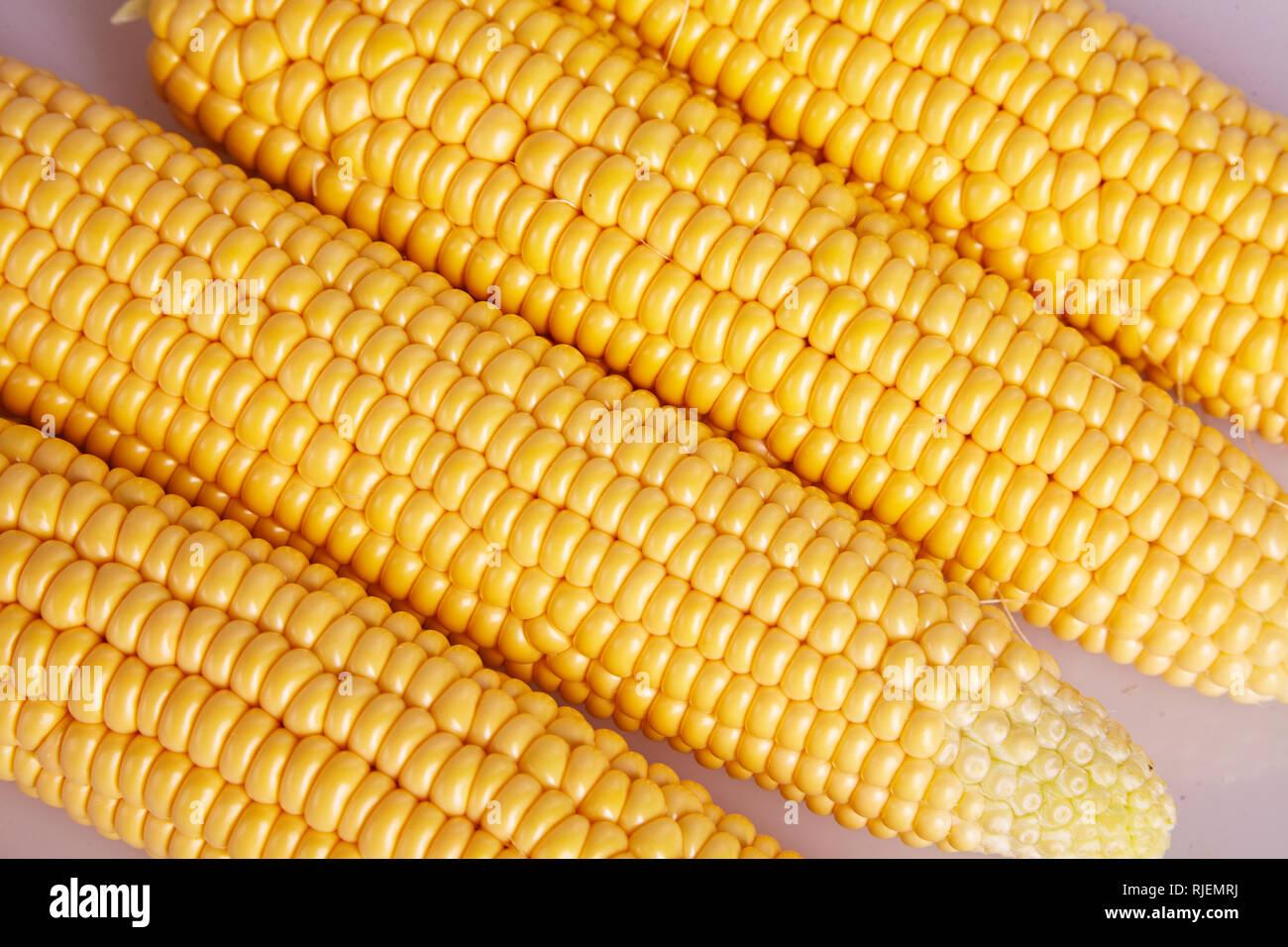 Fresh yellow corn cobs close up. Fresh vegetables. - Stock Image