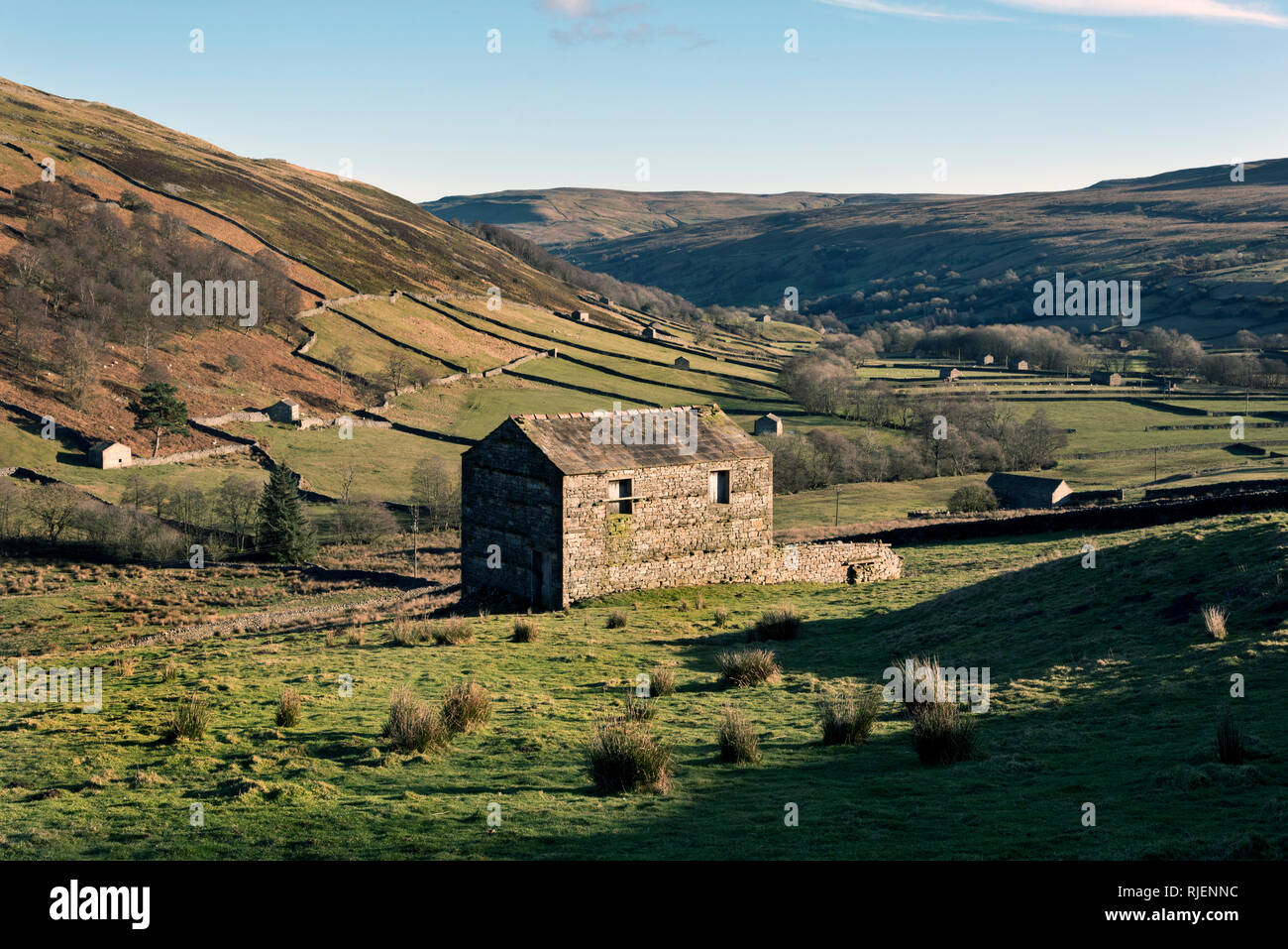 Traditional Yorkshire Dales barns near Thwaite, Swaledale, Yorkshire Dales National Park - Stock Image
