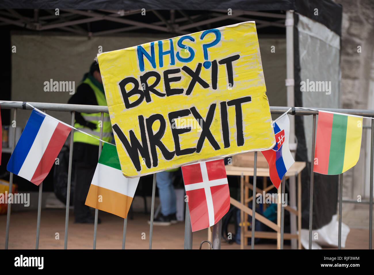 A placard highlighting the cost of Brexit to the National Health Service at the '#BinBrexitInBrum' demonstration in Birmingham, United Kingdom on Sund - Stock Image