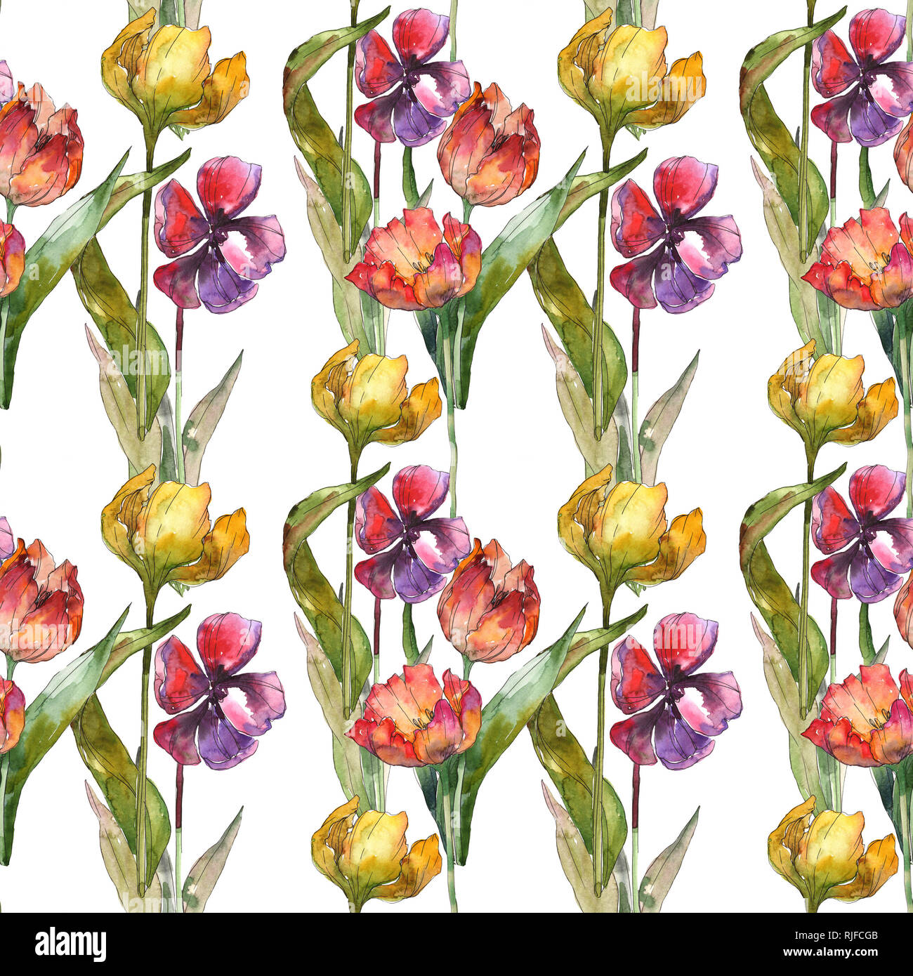 Botanical Tulip Print Stock Photos Botanical Tulip Print Stock