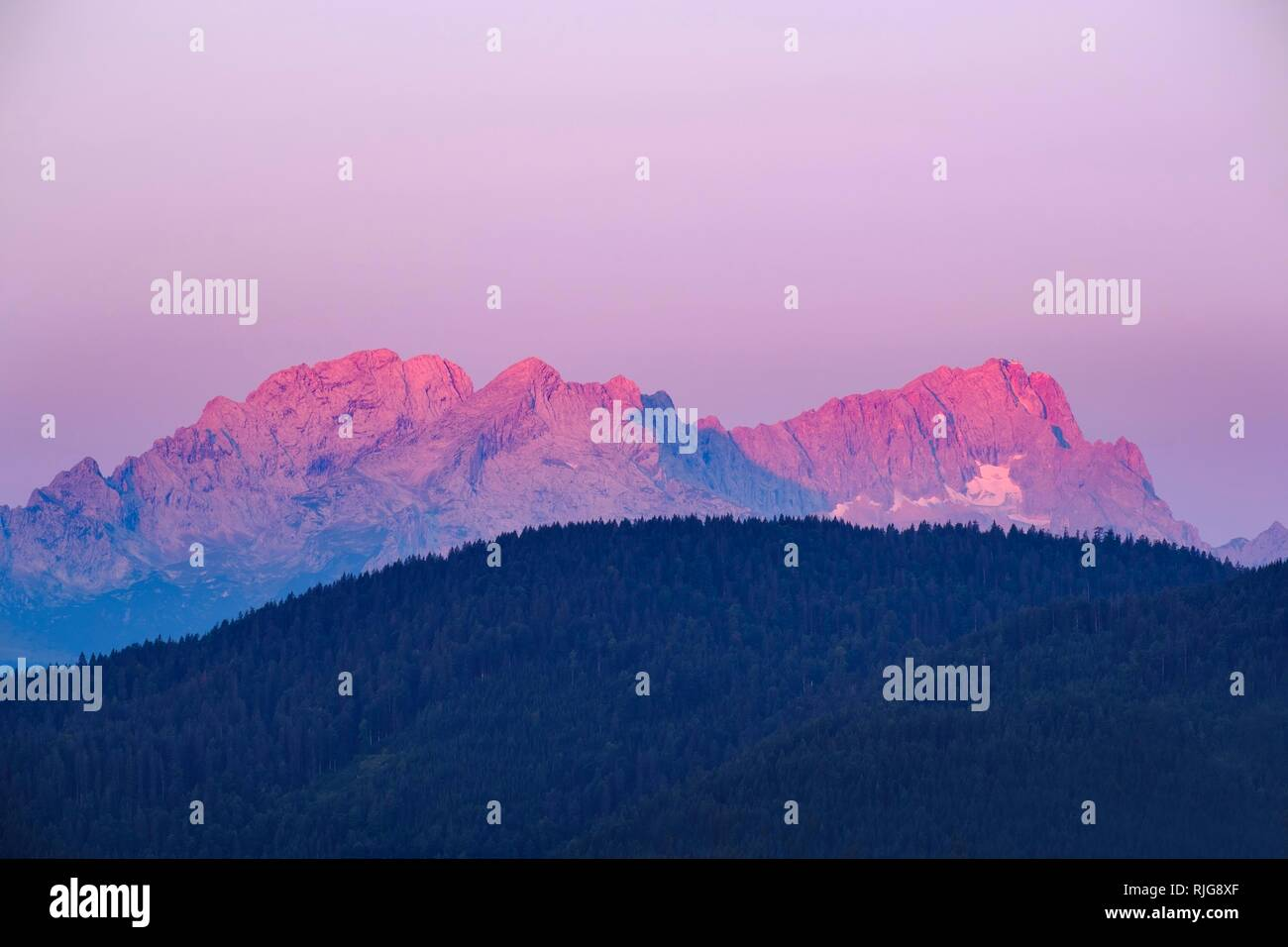 Wetterstein range with red glowing Zugspitze at sunrise, view from Krepelschrofen near Wallgau, Werdenfelser Land, Upper Bavaria - Stock Image