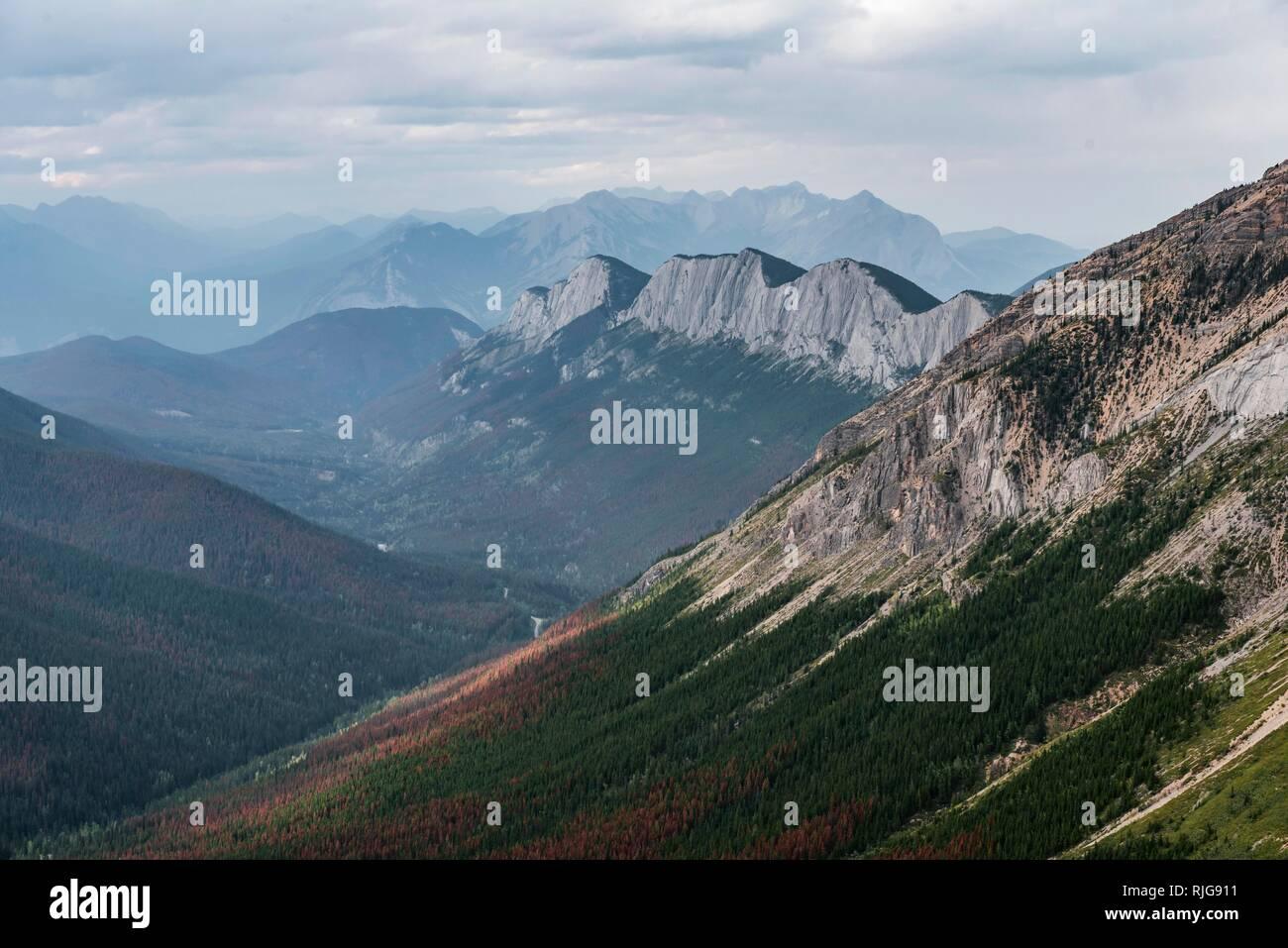 Striking mountain range, Ashlar Ridge, Jasper National Park, British Columbia, Canada - Stock Image