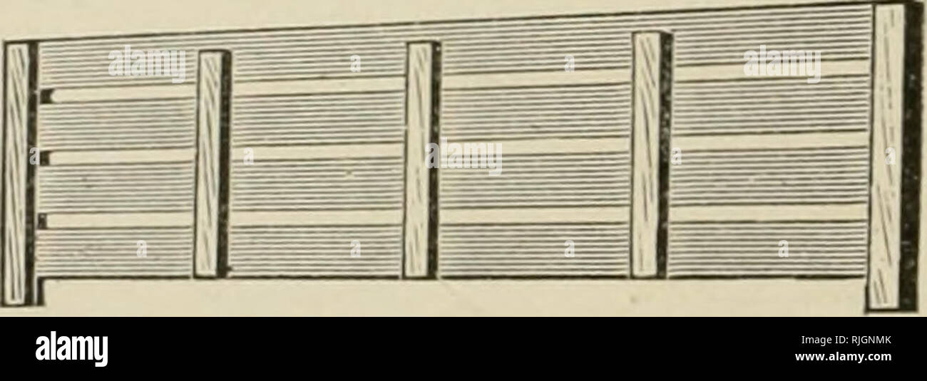 """. Bees and honey; or, The management of an apiary for pleasure and profit. Bees. Fig. 14.—Hoffman-Langstroth Brood-Frame. (See page 37.) PLAIN SECTION-BOXES AND CLEATED SEPARATORS. For years the section-box has been made with one or more scallops on each size, for the purpose of allowing the bees to enter from below, and also to pass on up to another tier of sec- tions when supers are tiered upon the hives. But lately there. Fig. 17.—Fence or Cleated Separator. has been introduced what is known as the """"Plain"""" section, all scallops being omitted, and the sections being made 1}4 inches - Stock Image"""