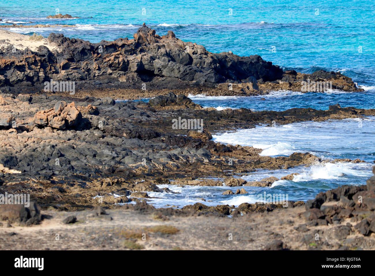 Impressionen: Atlantik, Sandduenen von Corralejo, Fuerteventura, Kanarische Inseln, Spanien/ sand dunes of Corralejo,Fuerteventura, Canary Islands, Sp - Stock Image