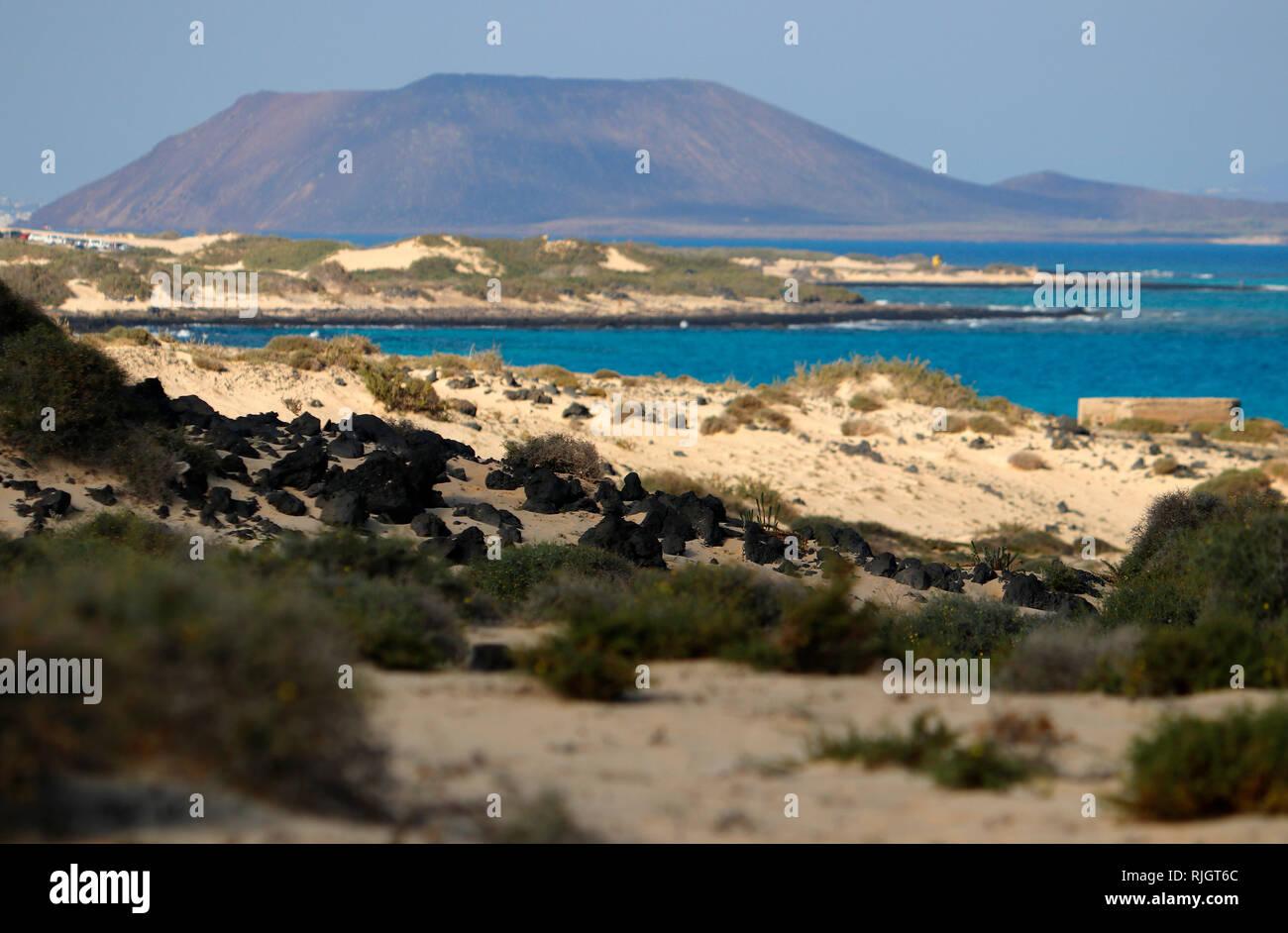 Impressionen: Atlantik, Sandduenen von Corralejo, im Hintergrund: Islote de Lobos, Fuerteventura, Kanarische Inseln, Spanien/ sand dunes of Corralejo, - Stock Image