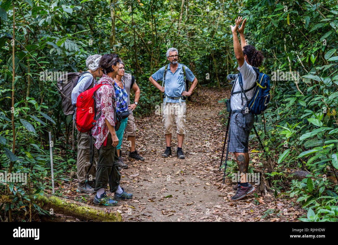 A nice photo of a local tour guide talking about the diversity of wildlife of the beautiful tropical rain forest of Corcovado National Park - Stock Image