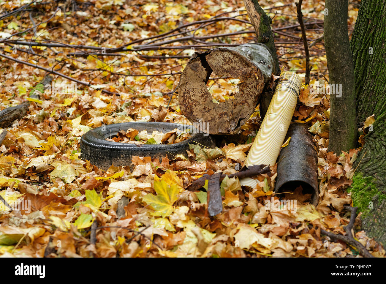 Garbage deposit in the forest on a tree, car tires, metal scrap, components, autumn leaves cover the ground - Location: Germany - Stock Image