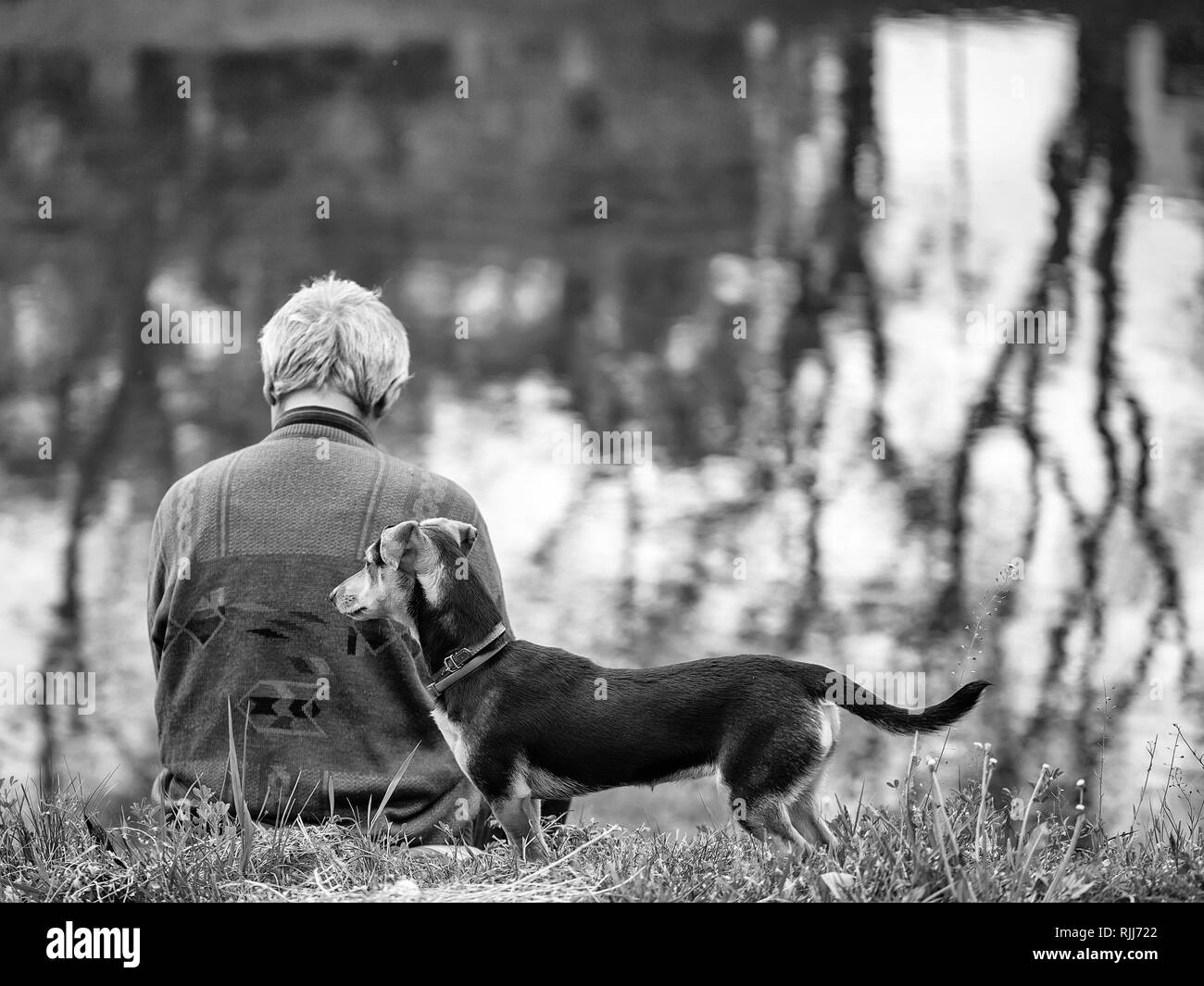 Old man with dog near water Stock Photo