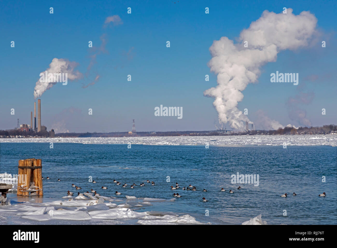 Marine City, Michigan - Coal-fired power plants and chemical plants line the ice-filled St. Clair River. Canvasback ducks swim in the open water near  - Stock Image