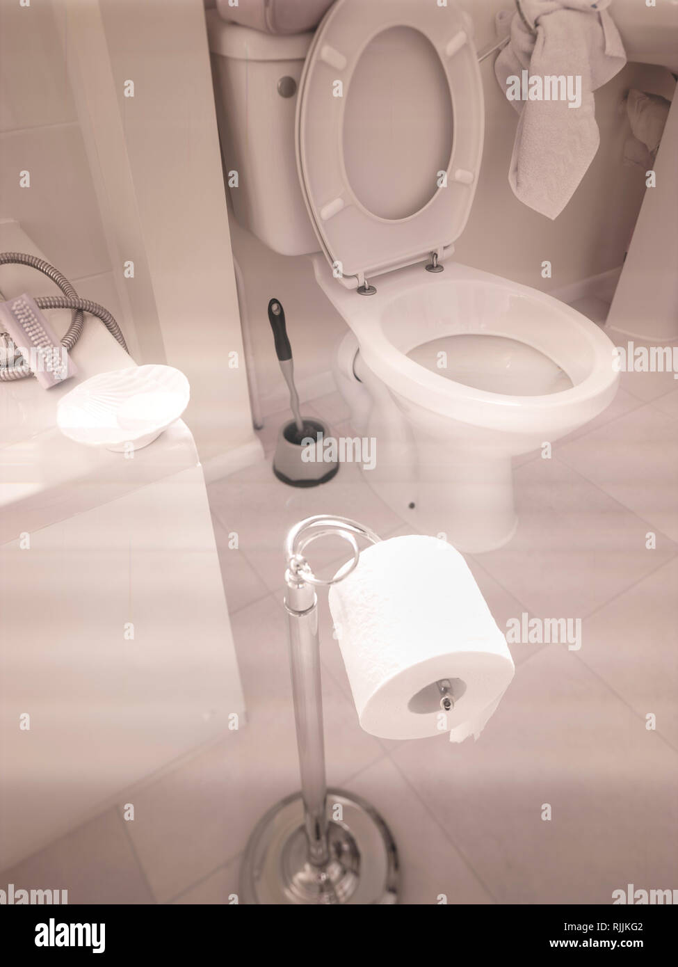 Toilet roll on roll holder in pale coloured bathroom - Stock Image