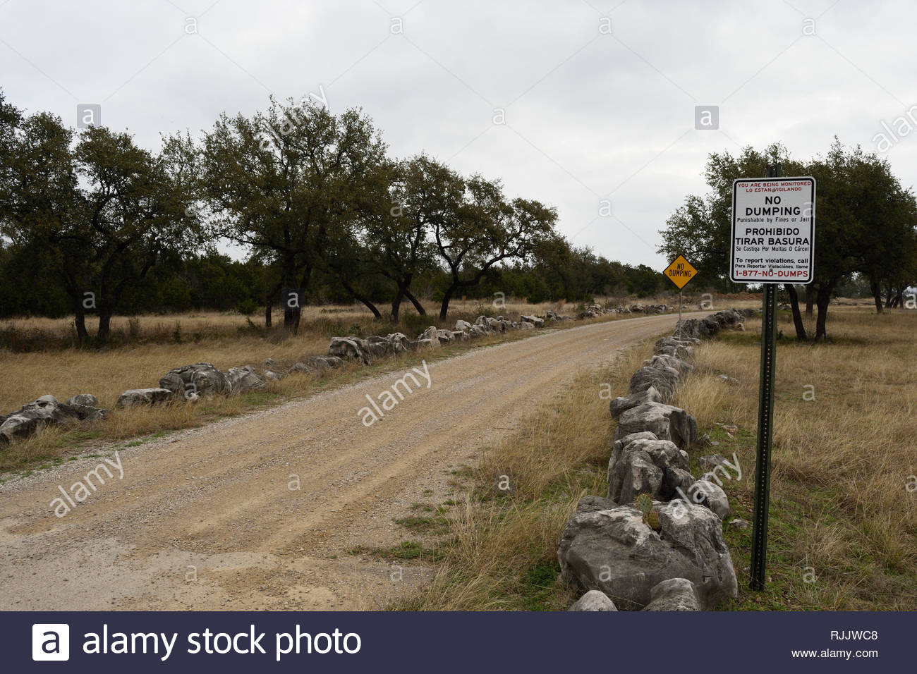 Texas Hill Country Gravel Road with No Dumping Signs. Two No Dumping Signs on Gravel Road with Stone Walls and Live Oak Trees. No Dumping No Dumping - Stock Image