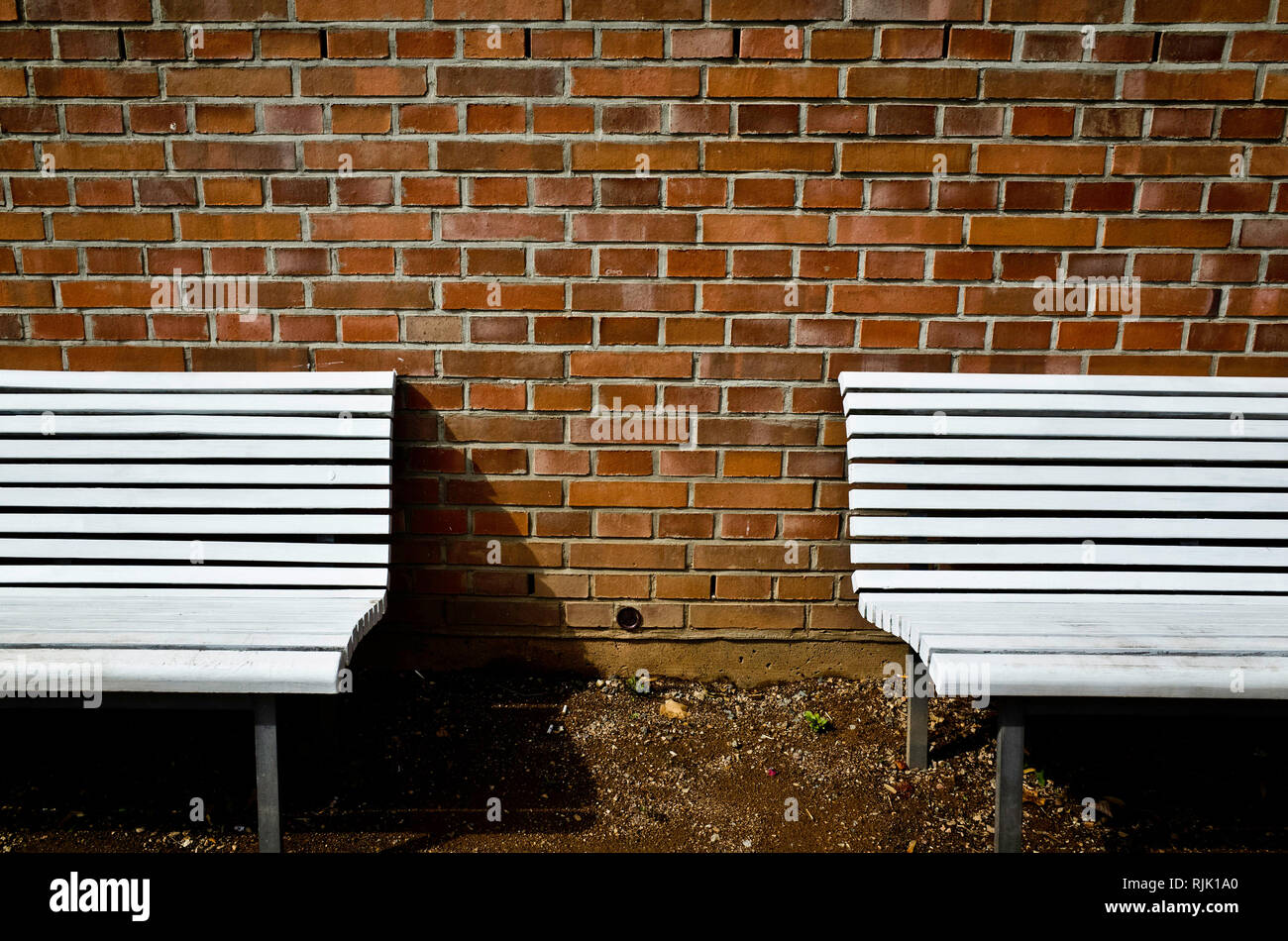 two white benches symmetrical against a red bricks wall - Stock Image