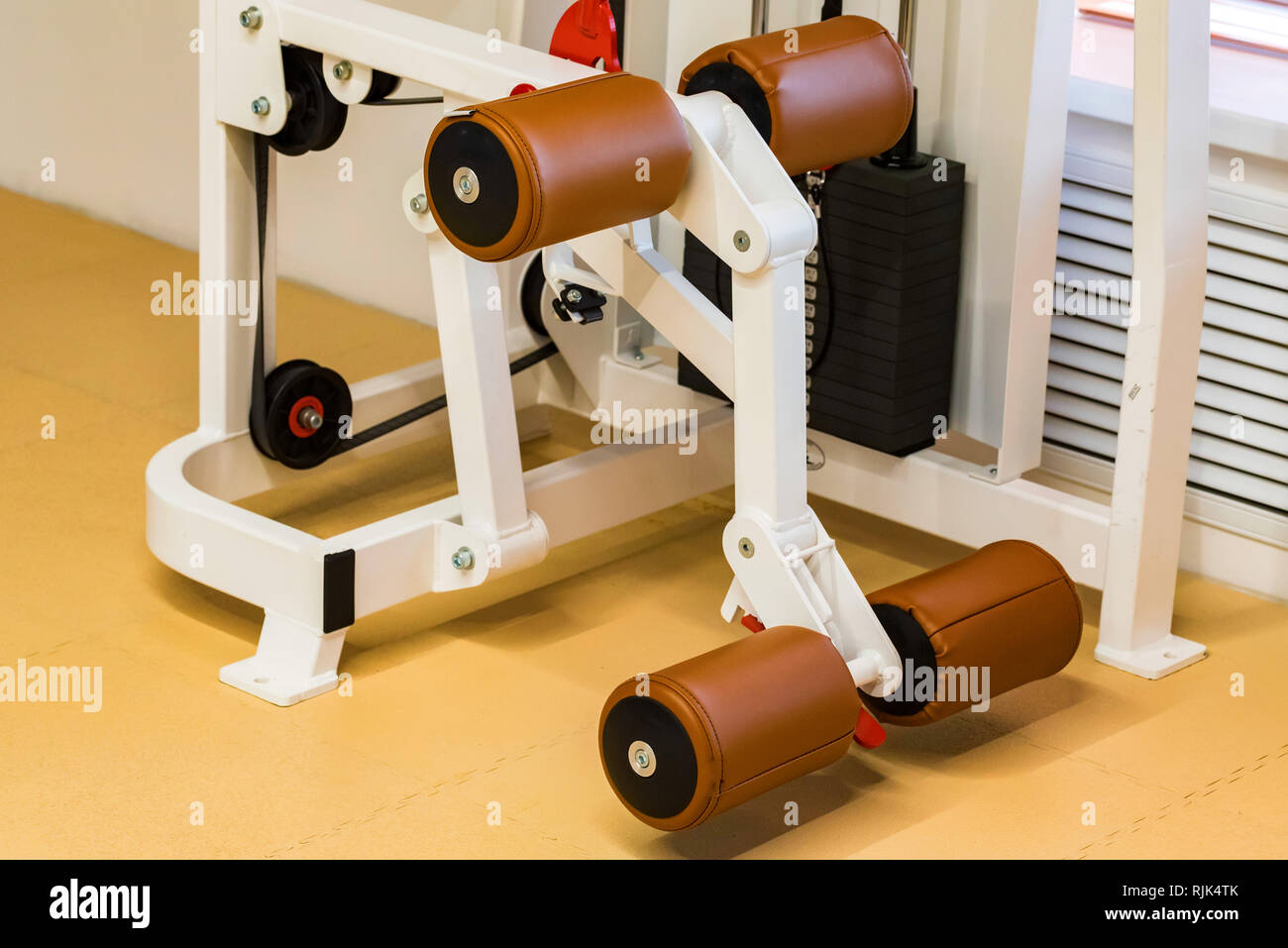 Empty standing leg curve exercise machine in modern gym - Stock Image