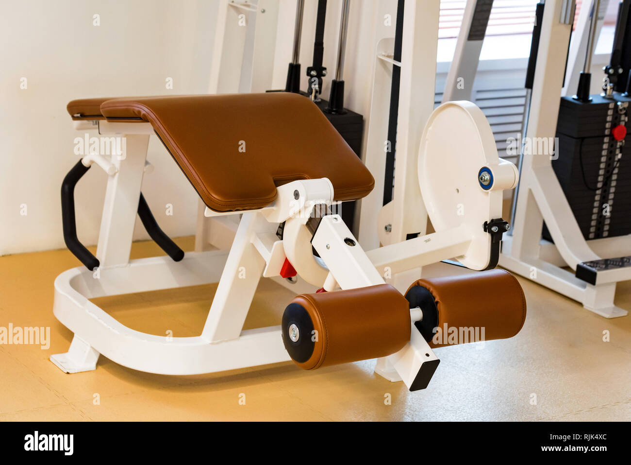 Empty lying leg curve exercise machine in modern gym - Stock Image