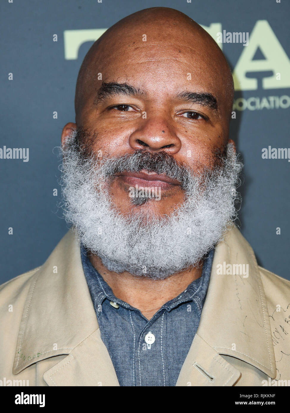PASADENA, LOS ANGELES, CA, USA - FEBRUARY 06: Actor David Alan Grier arrives at the FOX Winter TCA 2019 All-Star Party held at The Fig House on February 6, 2019 in Pasadena, Los Angeles, California, United States. (Photo by Xavier Collin/Image Press Agency) - Stock Image