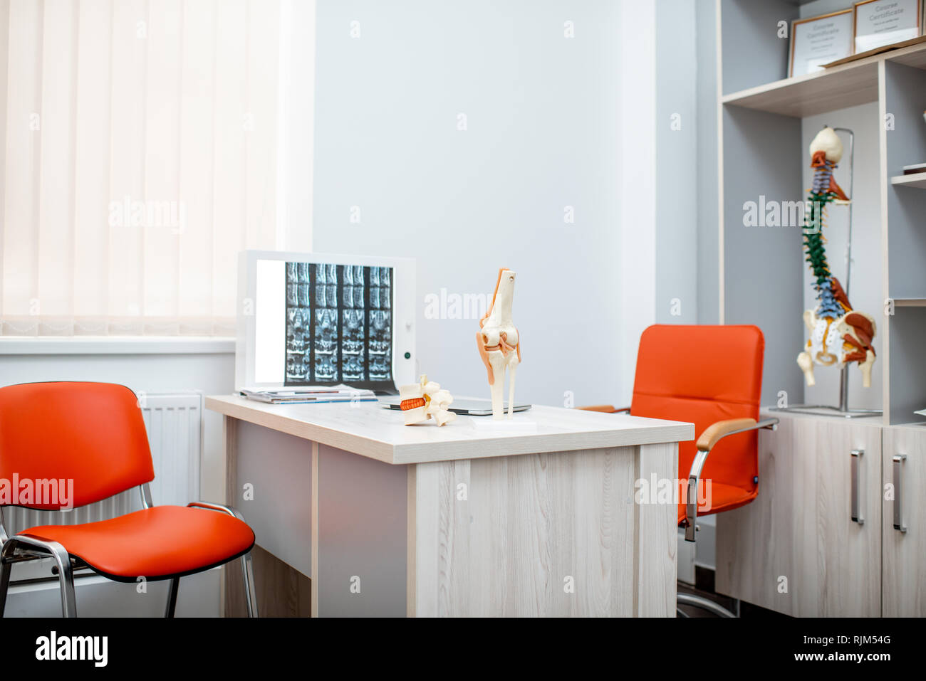 Office of the therapist with anatomical models and spine x-ray at the table - Stock Image