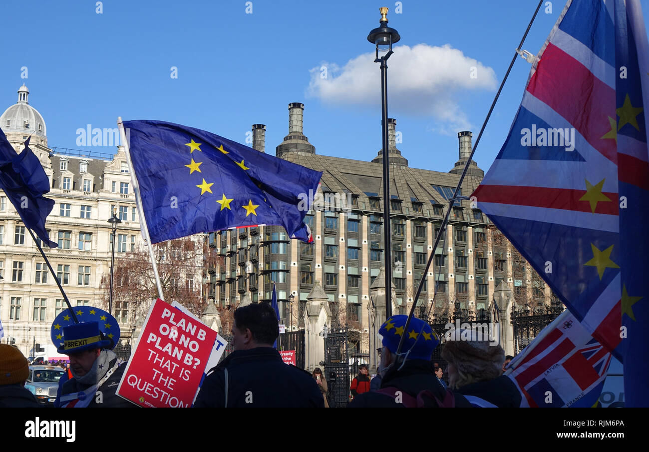 Brexit Protest. Anti-Brexit campaigners protests opposite Westminster. 28th of January 2019, London. - Stock Image