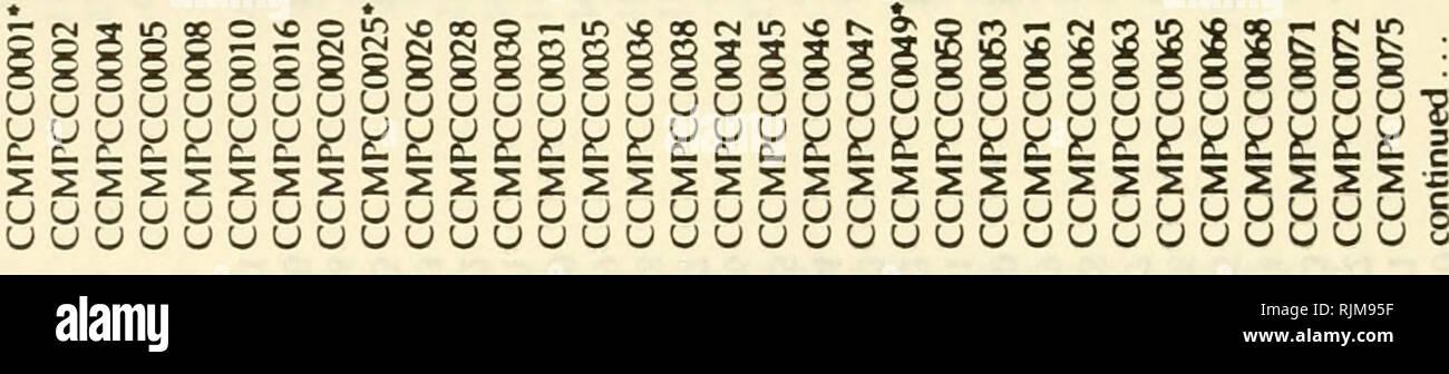 e Into Vo Stock s & e Into Vo Stock Page 13 Alamy