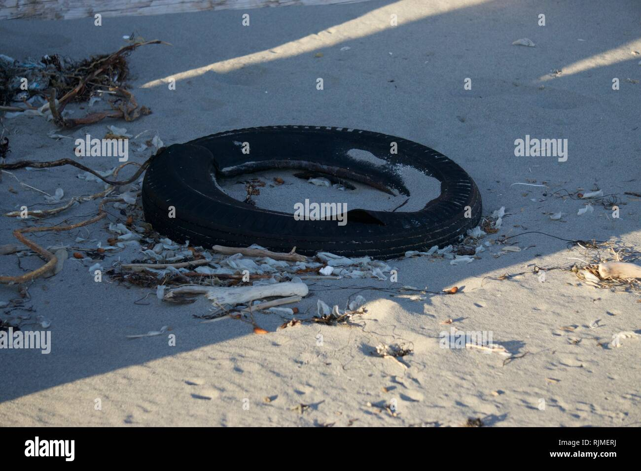 Tire Washed up on the Beach - Stock Image