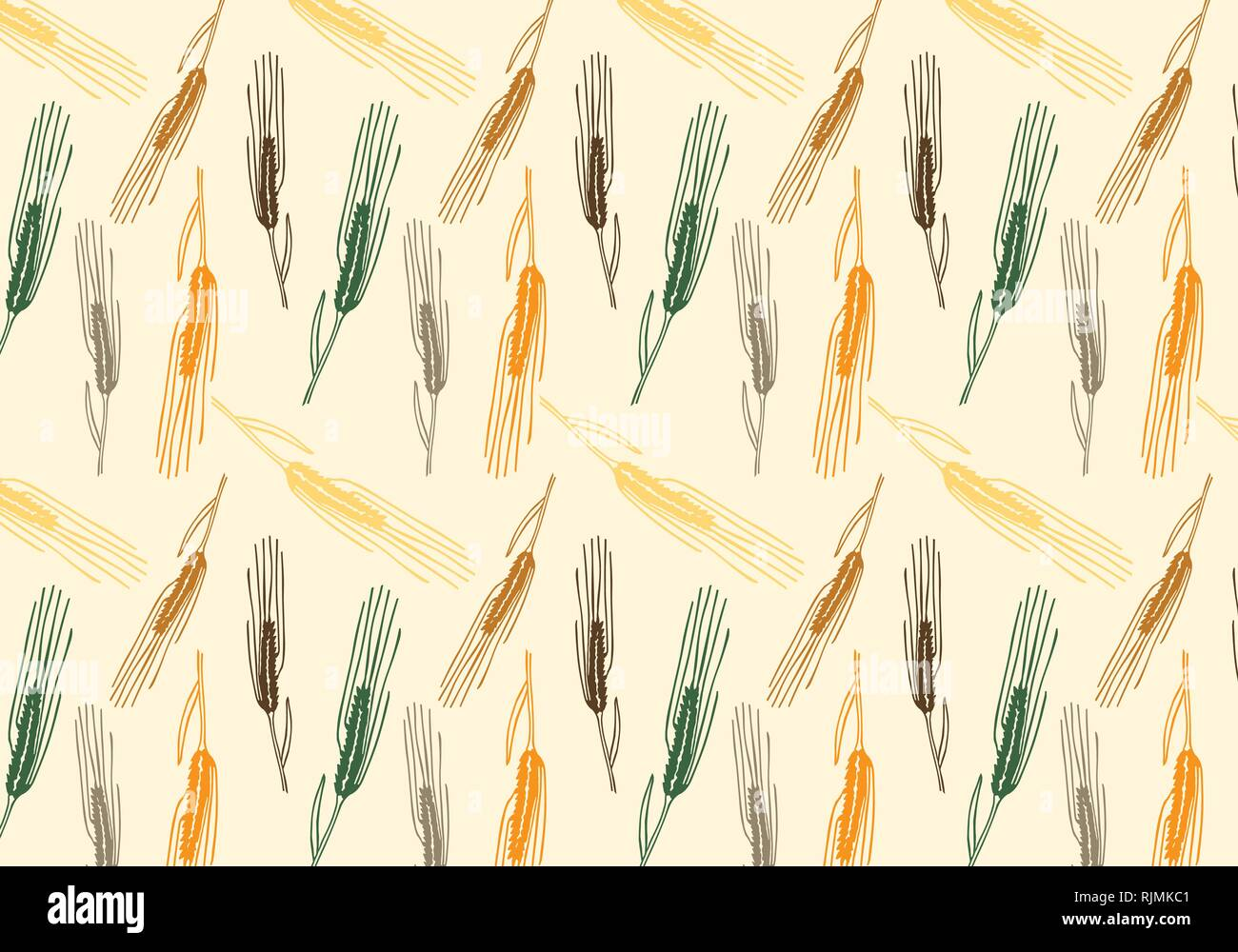 Vector pattern illustration hand drawn spring wheat in orange,green, brown and gray colors palette. Malt beer background. Autumn harvest. - Stock Vector