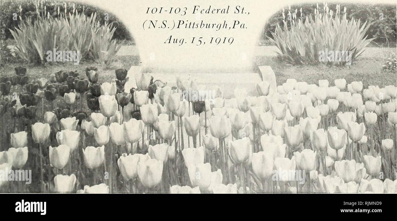 Beckert's fall guide to spring flower gardens : season of 1919