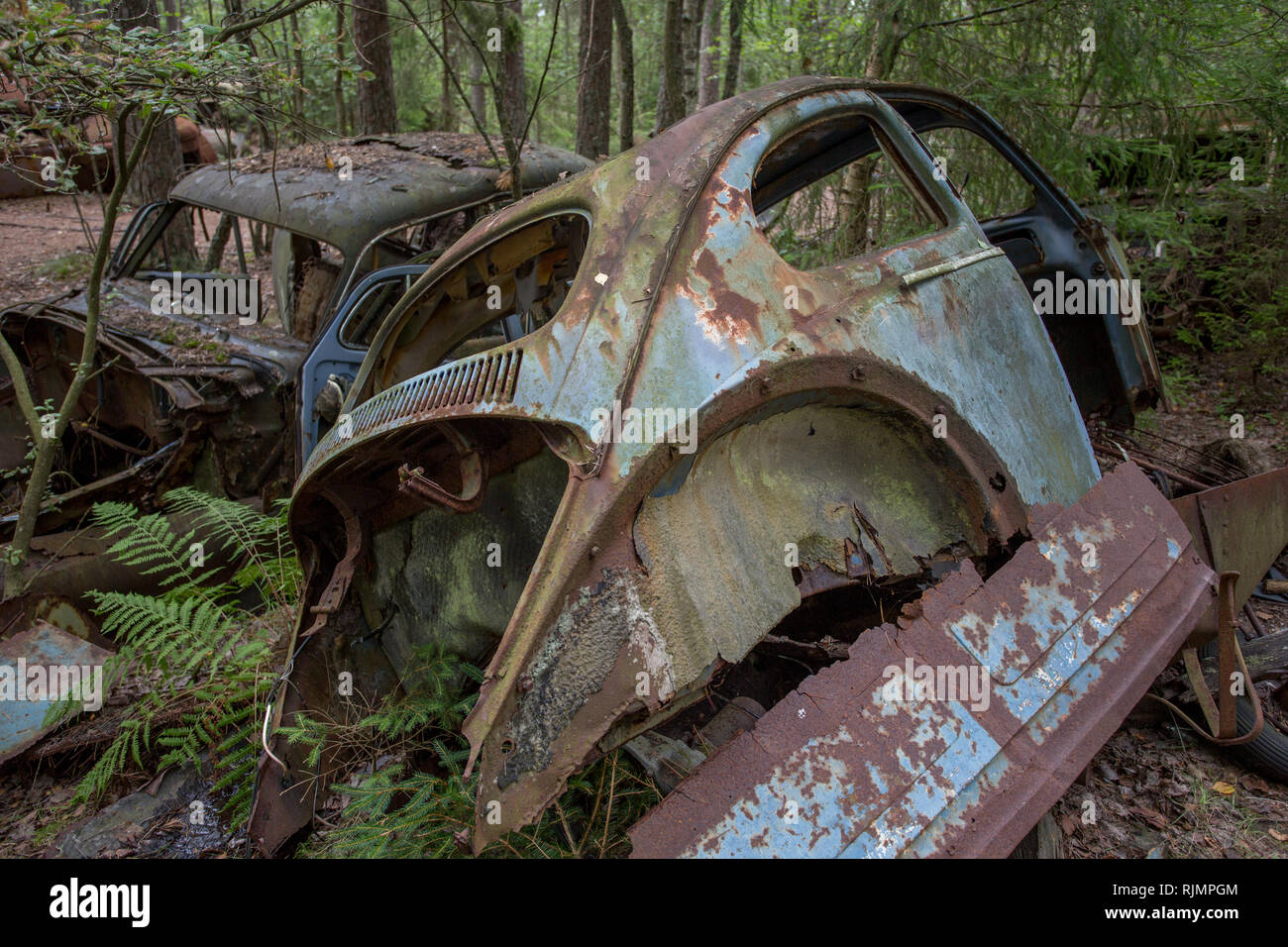 Old vintage rusted cars at a scrap yard at a forest in Ryd, Kyrko Mosse in Sweden - Stock Image