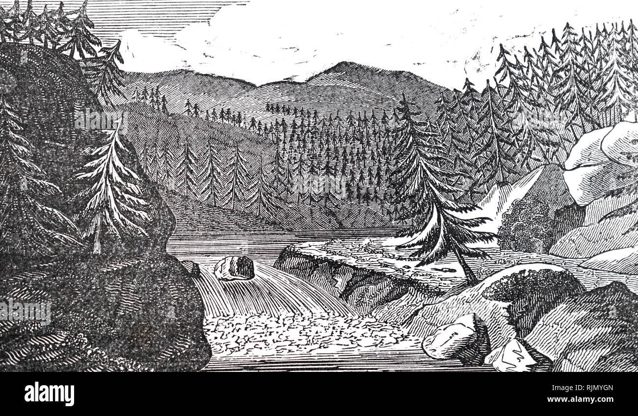 An engraving depicting pine trees covering Mount Pilatus, Switzerland. Dated 19th century - Stock Image
