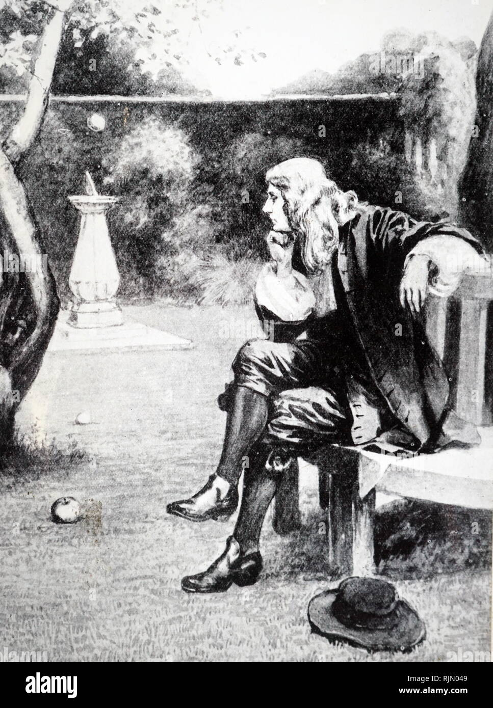 Isaac Newton (1642 - 1727), British scientist. Watches as an apple falls from a tree prompting his theory of Gravity. Illustration 1727 - Stock Image