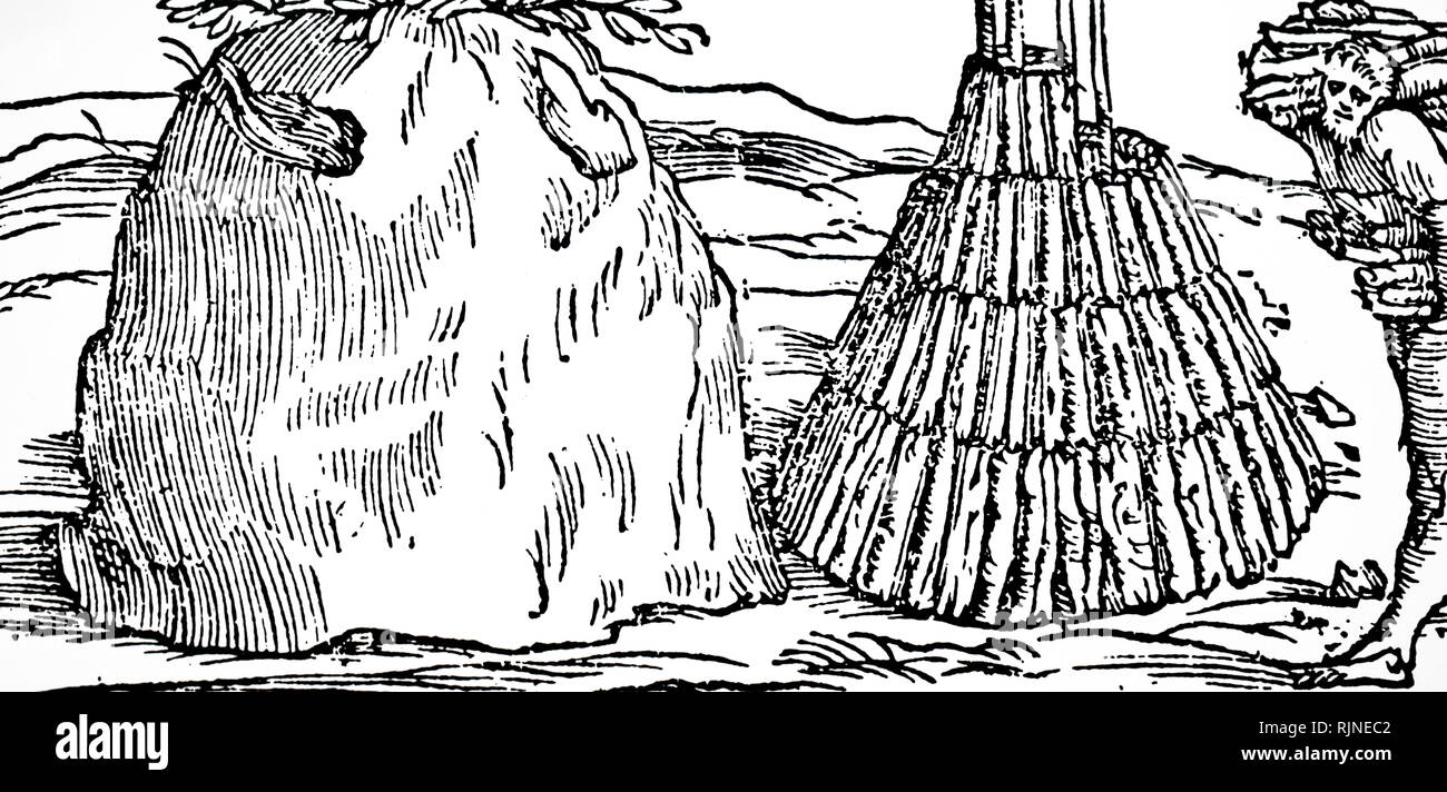 Woodcut engraving depicting charcoal burning: on the right of the picture the man is holding up a pyramid of sticks to be covered with bracken and earth, and then slowly burned (left). - Stock Image